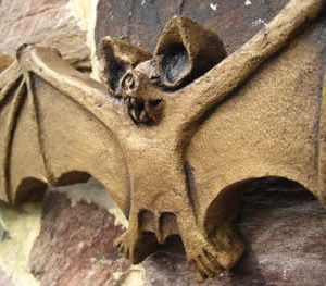 Bat Gothic Decor Vampire Dark