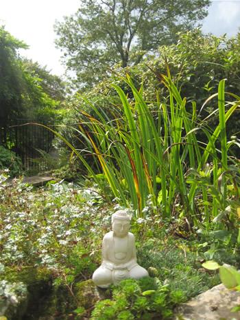 Small Garden Budda Pale