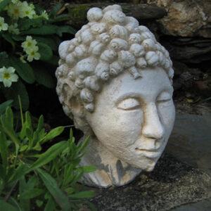 Snail Head Buddha Pale