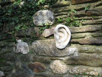 Ear Pale