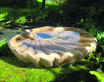 Scollop Bird Bath Dark