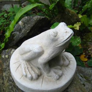 Small Lily Frog Sculpture Pale